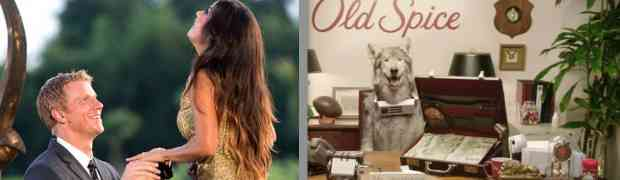 VIDEO: Woof! The Bachelor's Sean Lowe Gets Relationship Advice From A...Wolfdog!?
